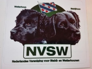 NVSW sticker met Friese vlag